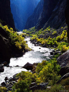 Gunnison River, paradise, Black Canyon, Colorado