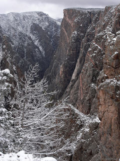 Black Canyon, Snow, Painted Wall, Colorado