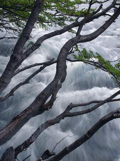 Lenga, River