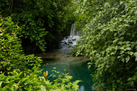 Daphne's Waterfalls