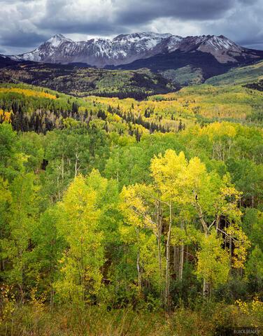 Fall Creek Vista
