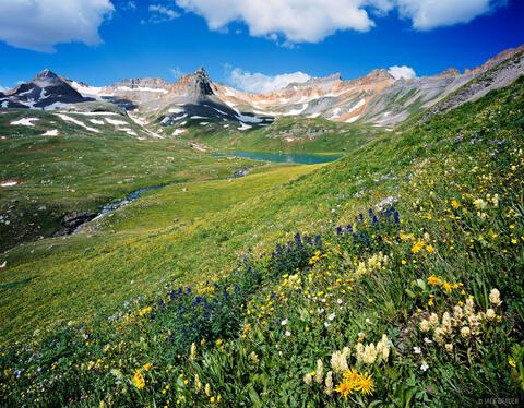 Ice Lakes Wildflowers