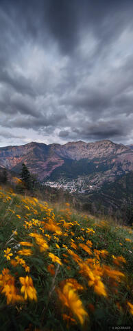 Gusty Ouray