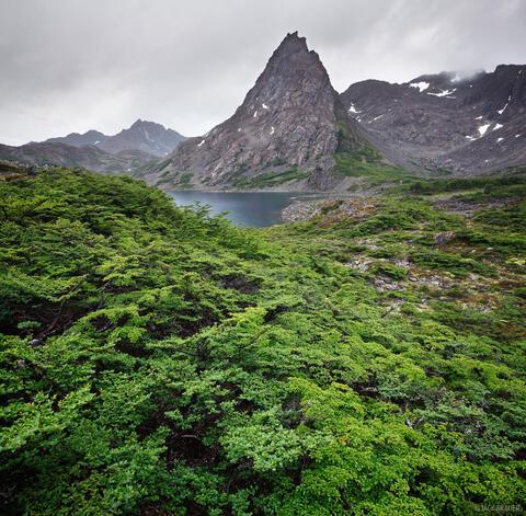 Cerro Gabriel, Laguna del Los Dientes, Isla Navarino, Chile, lenga, Andes