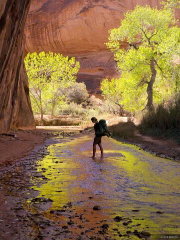 Hiking in Coyote Gulch #4