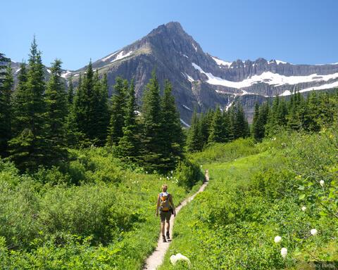 Hiking Swiftcurrent Creek
