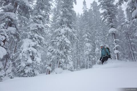 Fowler Hilliard Ski #2