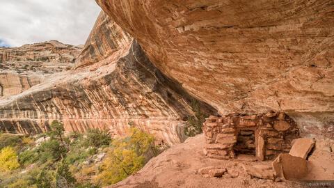 White Canyon Ruin 2