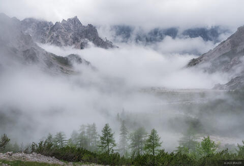 Misty Wimbachgries