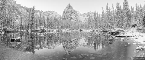 Snowy Lone Eagle Panorama B&W