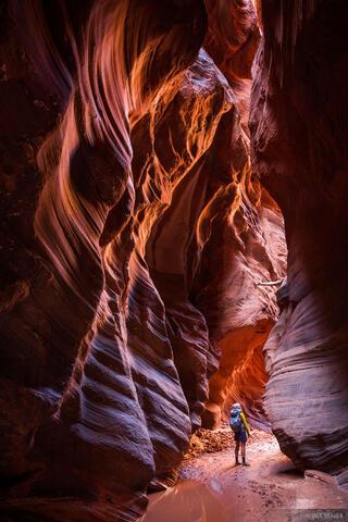 Glowing Chamber