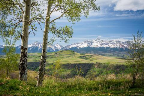 Wilson Peak Springtime