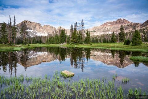 Stillwater Reflection