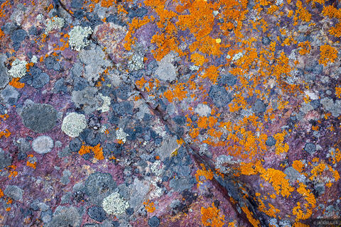 Ouray Rocks 5