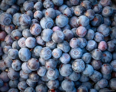 Heaps of Huckleberries