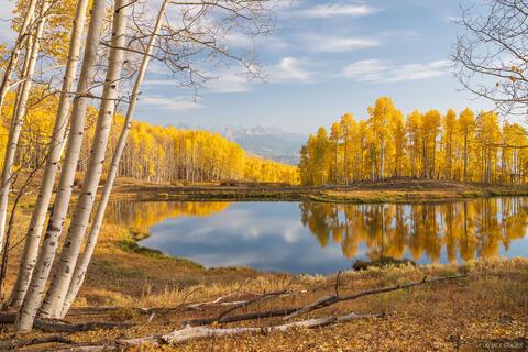 Autumn Eden