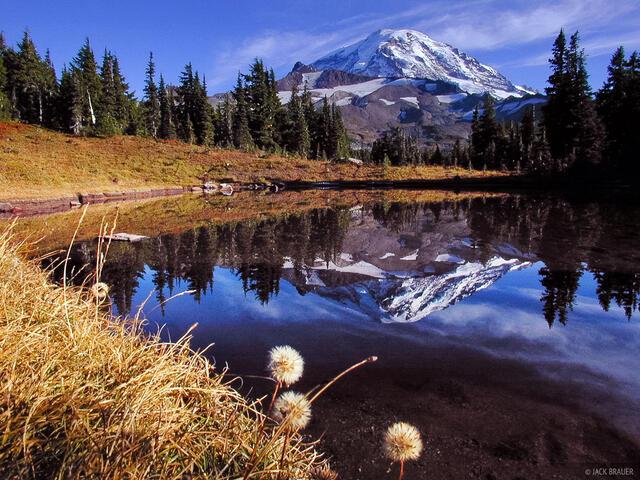 Spray Park, Mt. Rainier, reflection, Washington, Cascades