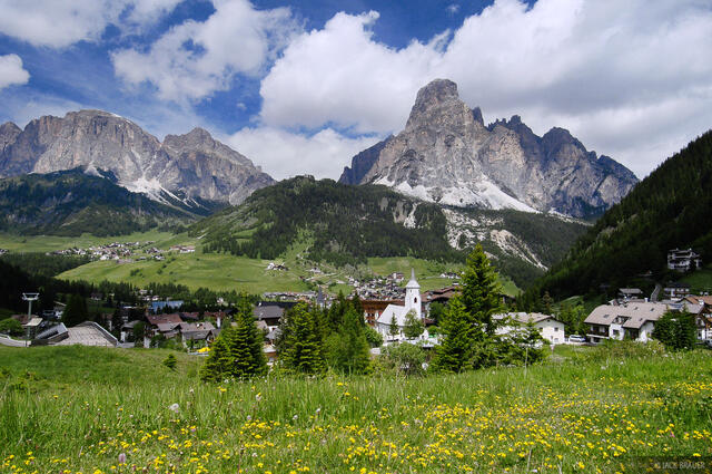Sassongher, wildflowers, Corvara, Dolomites, Italy, Alps