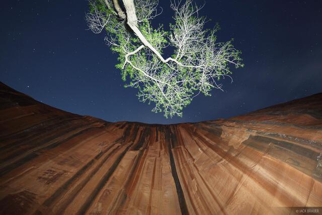 Escalante, Utah, flashlight painting, sandstone, Glen Canyon National Recreation Area