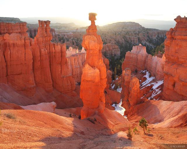 Bryce Canyon National Park, Thor's Hammer, sunrise, orange, hoodoo, Utah