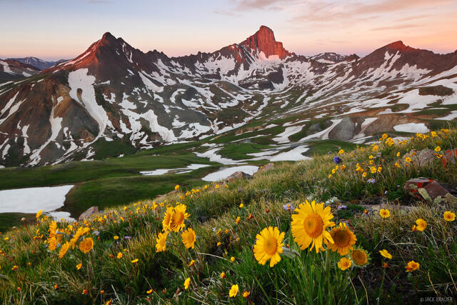 Wetterhorn Peak, Uncompahgre Wilderness, San Juan Mountains, Colorado, sunflowers, sunrise