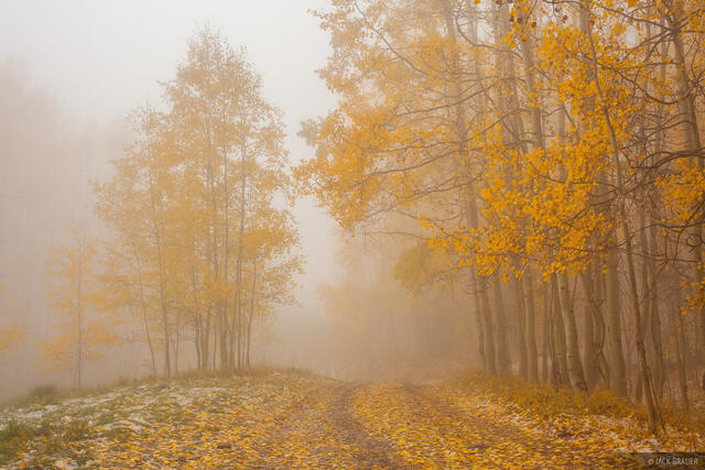 Colorado,San Juan Mountains,aspens,autumn,fall, foggy, Last Dollar Road