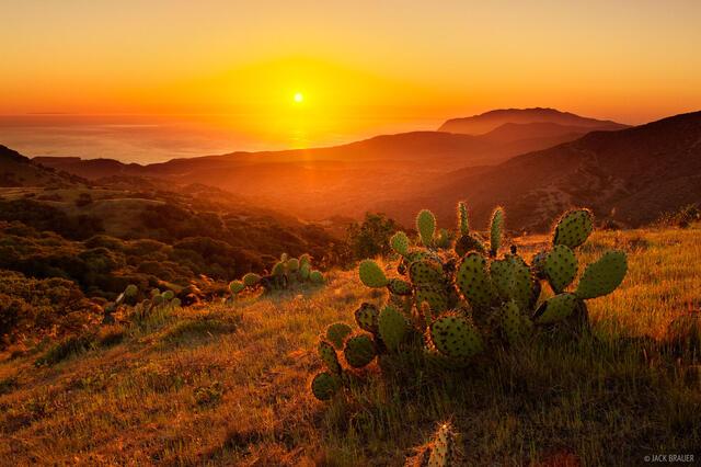 Catalina Island, California, Blackjack, sunset, Pacific Ocean