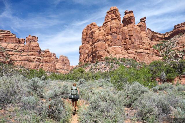 Cedar Mesa, Utah, Owl Creek Canyon, hiking, Bears Ears National Monument