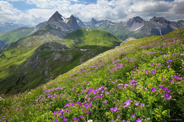 Lechtal Alps, Austria, Leutkircher, meadows, Weisschrofenspitze