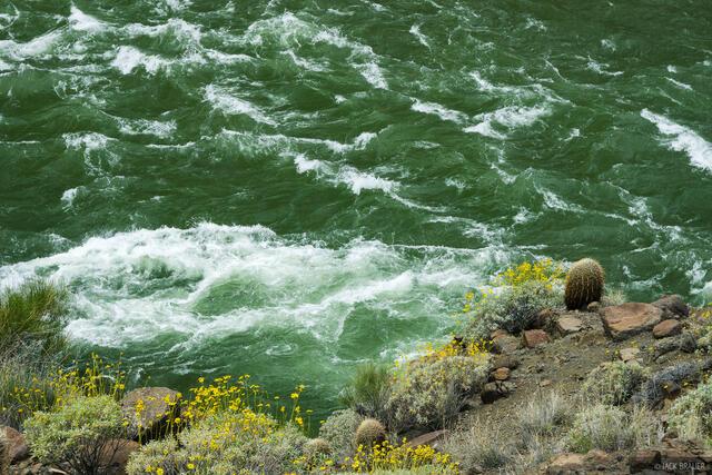 Arizona,Colorado River,Grand Canyon