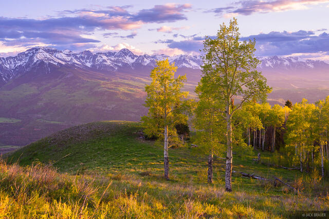Baldy Peak,Colorado,San Juan Mountains,Sneffels Range,aspens, June