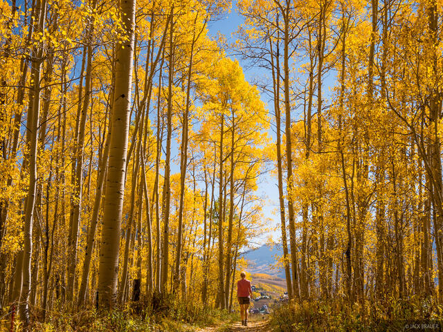 Colorado,Crested Butte,aspens, hiking