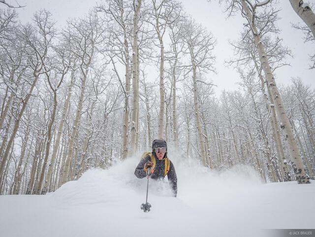 Colorado,San Juan Mountains,skiing, aspens, powder, January, Don Moden