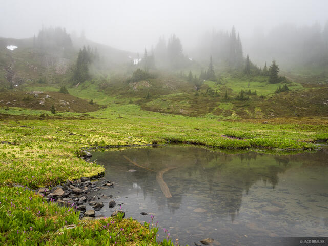 Heart Lake, Olympic Peninsula, Sol Duc, Washington, Olympic National Park, fog