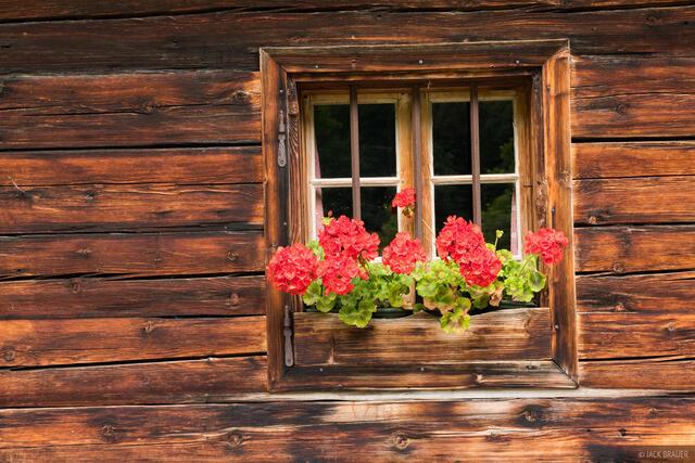 Austria, Engalm, Karwendel, Alps, flowers, window