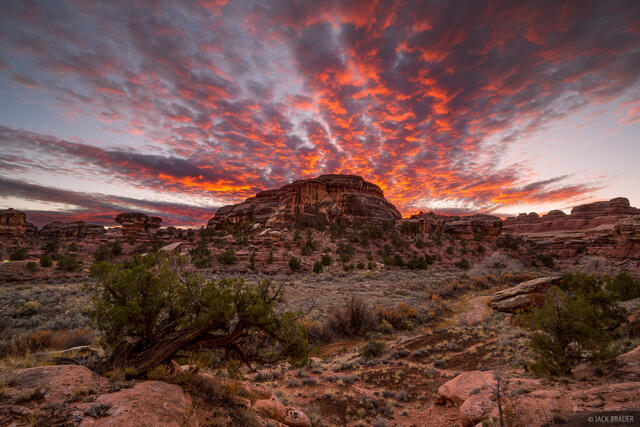 Canyonlands National Park, Salt Creek, Utah, November, sunset