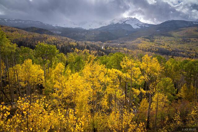 Colorado, San Juan Mountains, San Miguel Range, aspens