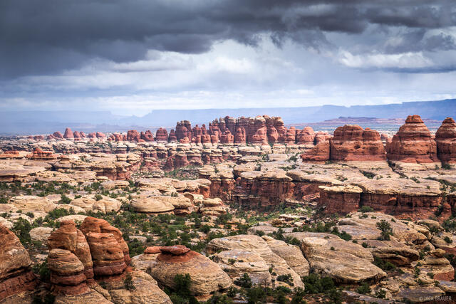 Canyonlands National Park, Needles District, Utah