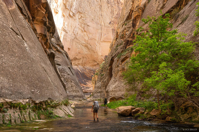 Death Hollow, Grand Staircase - Escalante National Monument, Utah, hiking, Escalante