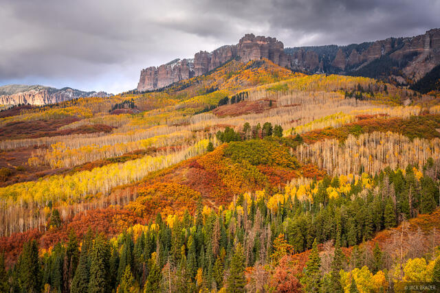 Cimarrons, Colorado, San Juan Mountains, aspens, Owl Creek, autumn