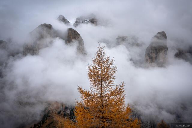Dolomites, Gruppo del Sella, Italy, Passo Gardena, larch, October, Alps