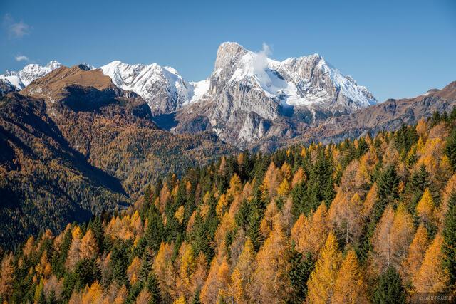Dolomites, Italy, Marmolada, larch, November, Alps