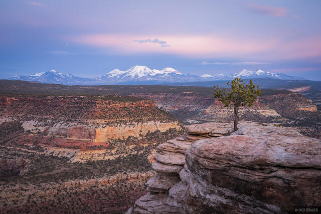 Colorado, Dolores River, La Sal Mountains, Utah, Dolores River Canyon Wilderness Study Area