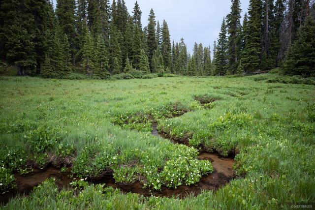 Colorado, Lizard Head Wilderness, San Juan Mountains, San Miguel Range