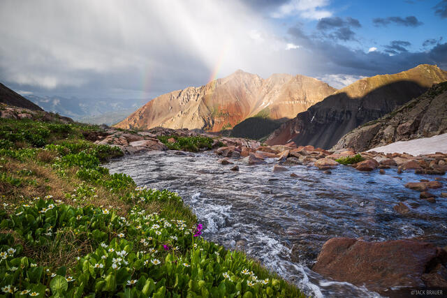 Colorado, Lizard Head Wilderness, San Juan Mountains, San Miguel Range, Sunshine Mountain, rainbow, wildflowers