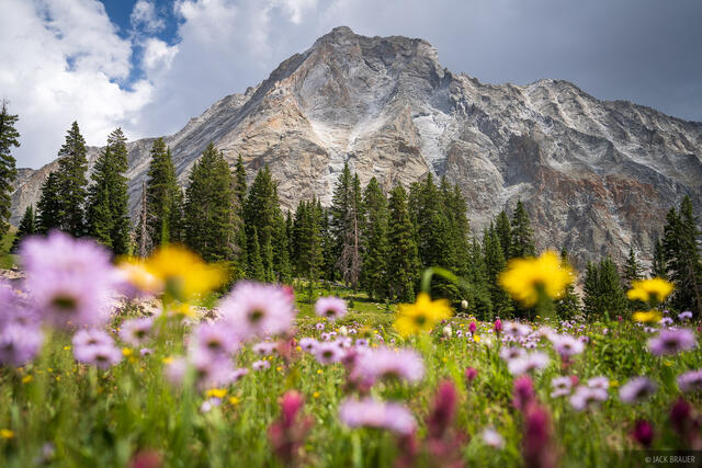 Capitol Peak, Colorado, Elk Mountains, Maroon Bells Snowmass Wilderness, wildflowers