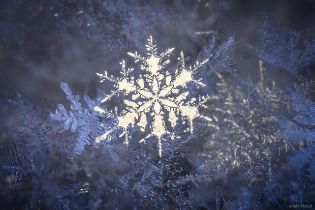 snowflakes, snowflake, macro