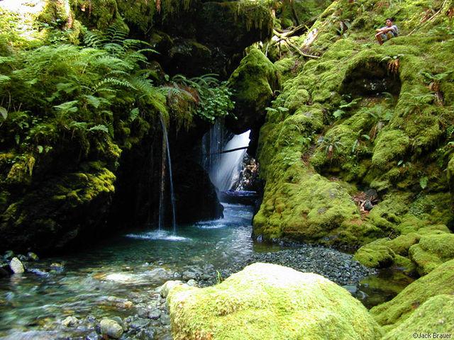 waterfall, Olympic Peninsula, Washington