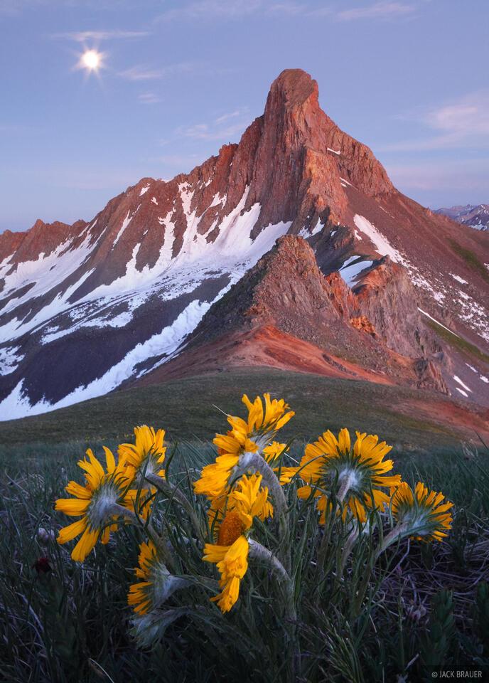 Wetterhorn Peak, San Juan Mountains, Colorado, sunflowers, moon