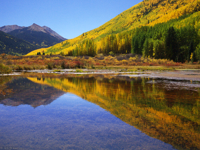 Red Mountain Pass, aspens, San Juan Mountains, Colorado, photo